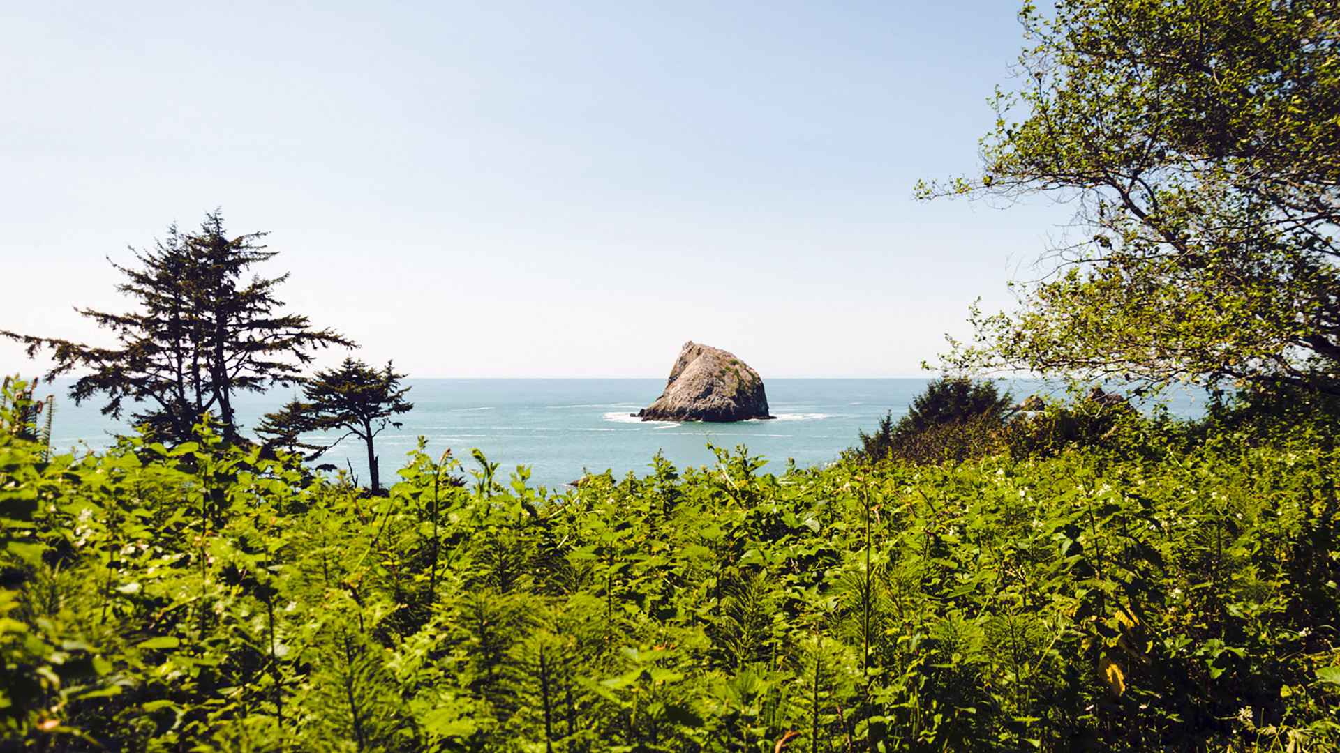 yurok loop trail