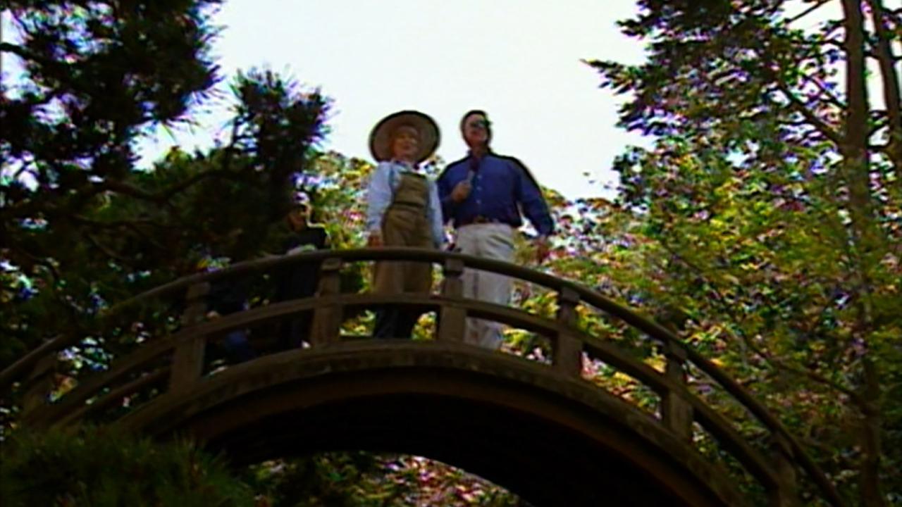 California's Gold: Japanese Tea Garden