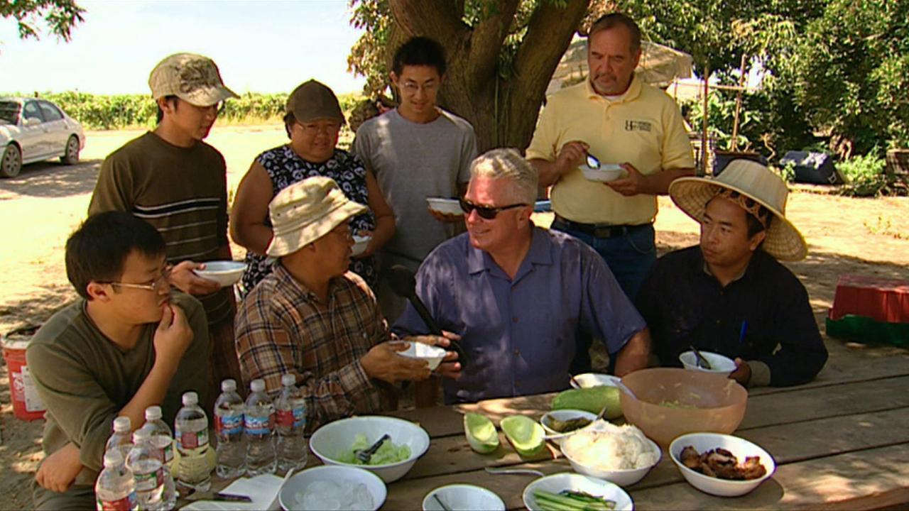 California's Gold: Hmong