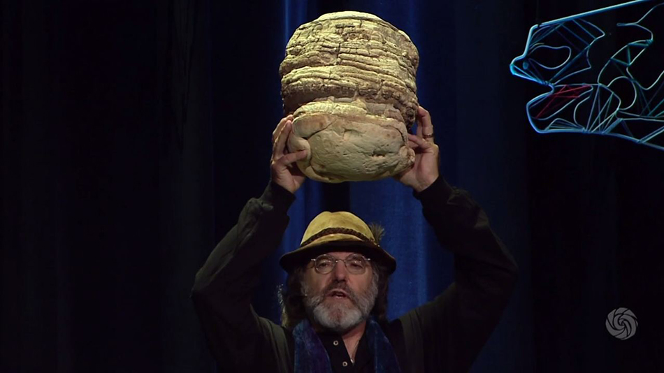 Bioneers Summit: Paul Stamets - How Mushrooms Can Save Bees and Our Food Supply