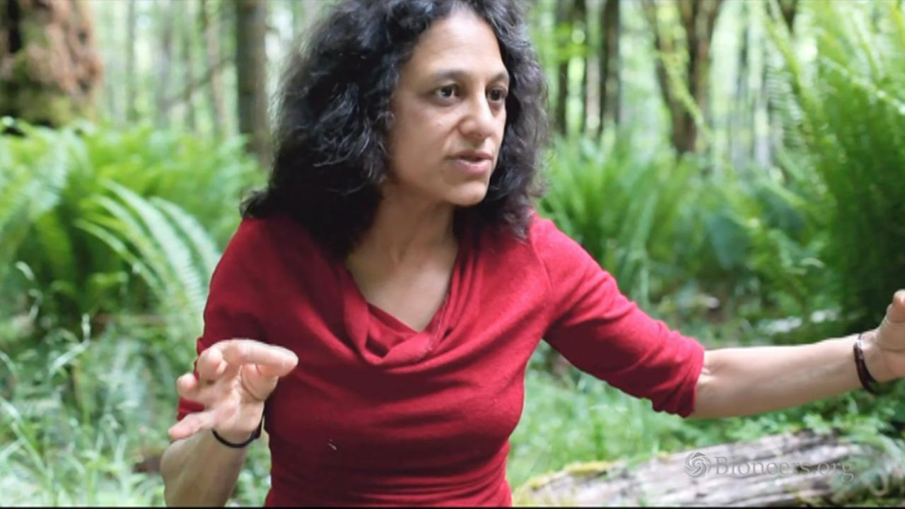 Nalini Nadkarni: Between Earth and Sky - Trees as Silent Teachers in Strident Times