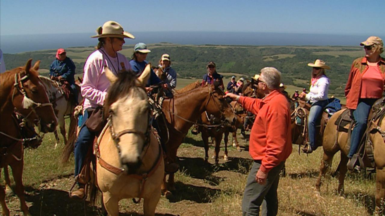 California's Gold: Hearst Ranch