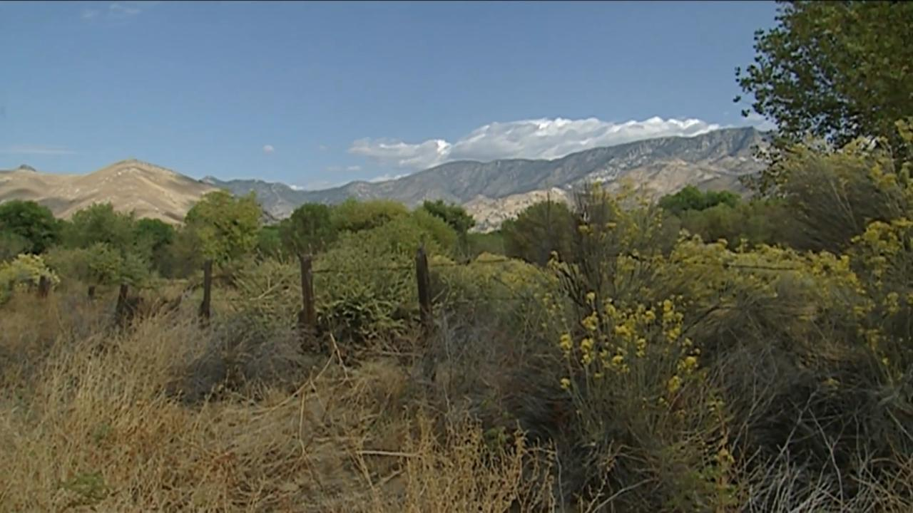 California's Gold: Kern River Preserve