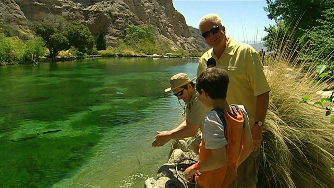 California's golden Parks: Whitewater Preserve