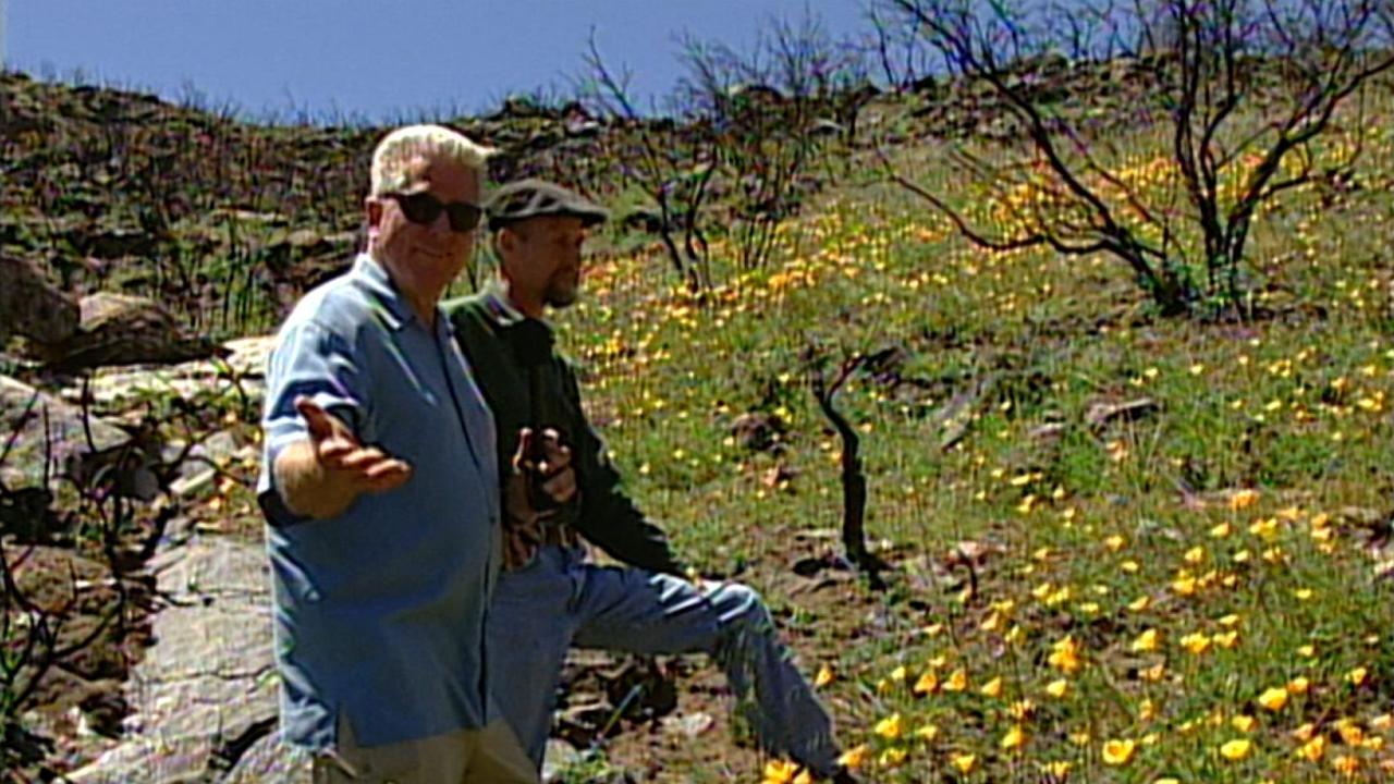 California's Golden Parks: Cuyamaca Rancho