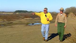 California's Golden Parks: Ano Nuevo